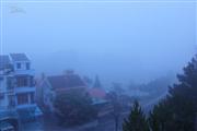 Ký sự Đà Lạt - trải nghiệm 4 ngày (tiếp theo) - Tạm biệt Đà Lạt đầy sương sớm...